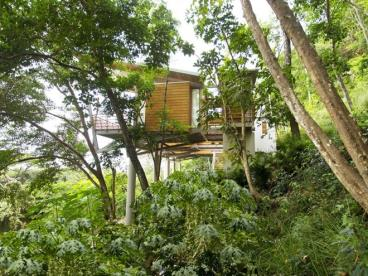 全木质原生态的空中住宅 如在云端